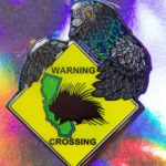 Porcupine Crossing