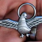 Hoopin Pigeon