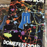 Puremotion Domefest 2019