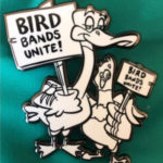 Bird Bands Unite