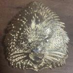 Shaman Porcupine